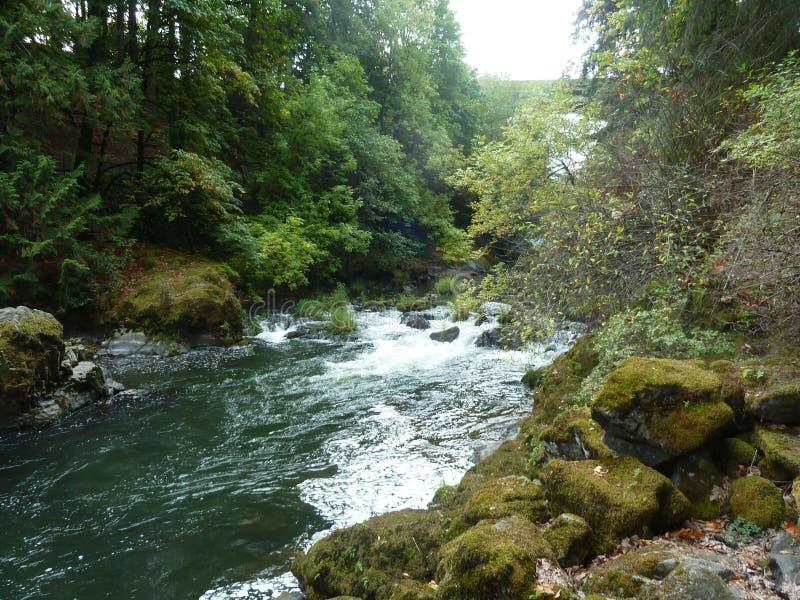 O meio cai no rio de Deschutes foto de stock royalty free