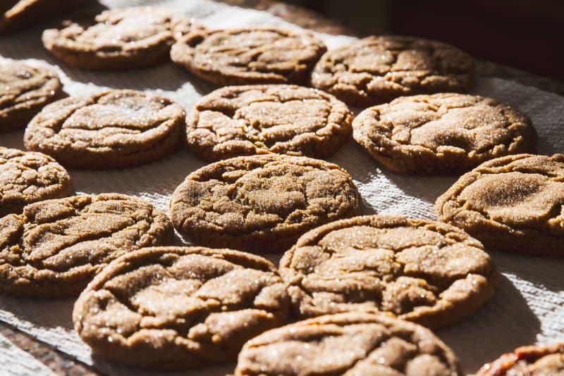 O melaço caseiro Sugar Cookies cozeu recentemente imagem de stock royalty free
