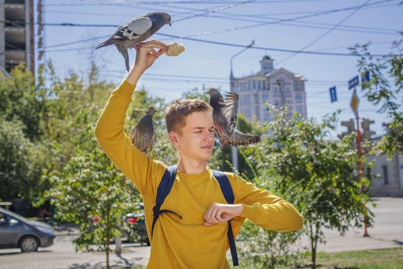 O menino adolescente alimenta pombos na rua da cidade foto de stock