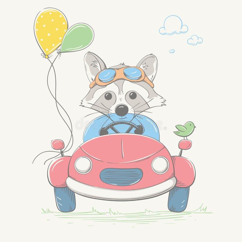 O menino bonito bonito do guaxinim está conduzindo o carro Piloto novo com os vidros e os balões da cor Série do verão do cartão  ilustração do vetor