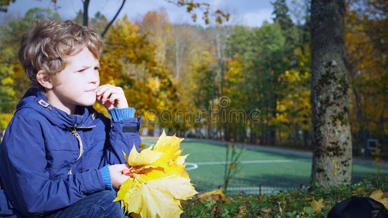 O menino caucasiano pequeno que senta-se com o ramalhete do amarelo sae no coto no parque do outono, fora fotografia de stock