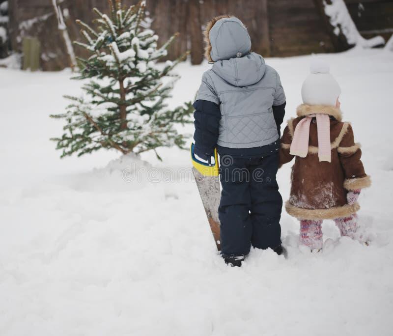 O menino com viu a árvore de Natal do sawing fotos de stock