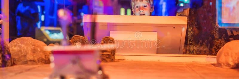 O menino controla o vagabundo do brinquedo em Marte Voo à BANDEIRA do conceito de Marte, FORMATO LONGO foto de stock royalty free