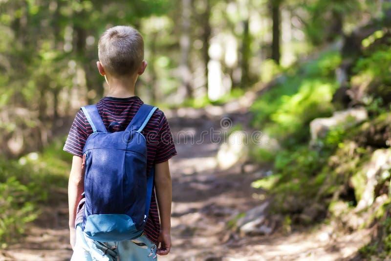 O menino da criança pequena com caminhantes backpack a viagem na floresta fotos de stock
