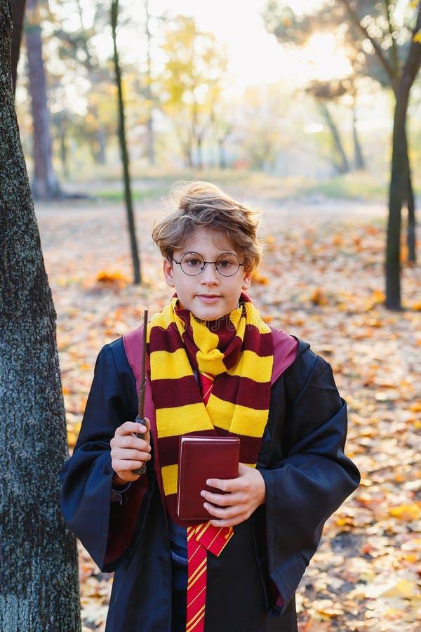 O menino de Harry Potter nos vidros está no parque do outono com folhas do ouro, guarda o livro em suas mãos imagem de stock royalty free