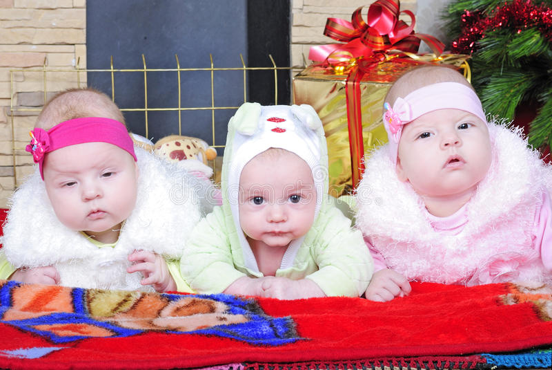 O menino e as meninas dos gêmeos aproximam uma árvore de Natal foto de stock