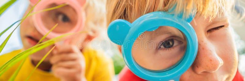 O menino e a menina est?o olhando em uma lupa na perspectiva do jardim BANDEIRA de educação da casa, FORMATO LONGO imagens de stock royalty free