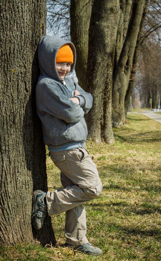 O menino está estando pela árvore fotos de stock royalty free