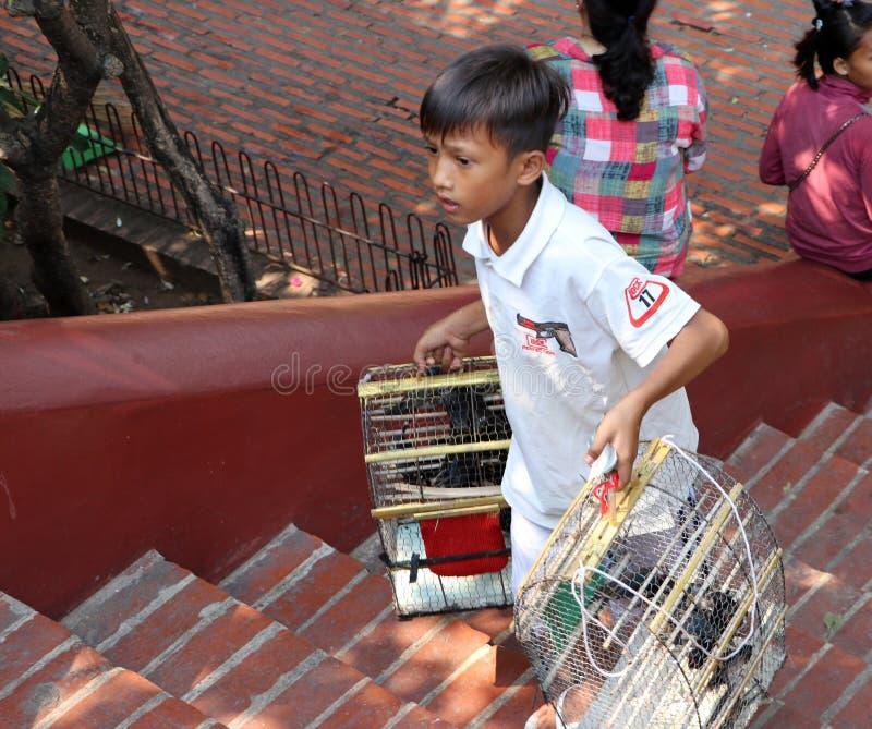 O menino guarda a gaiola de pássaro para a venda ao filantropo para comprar um pássaro para liberar-se no templo de Phnom fotos de stock