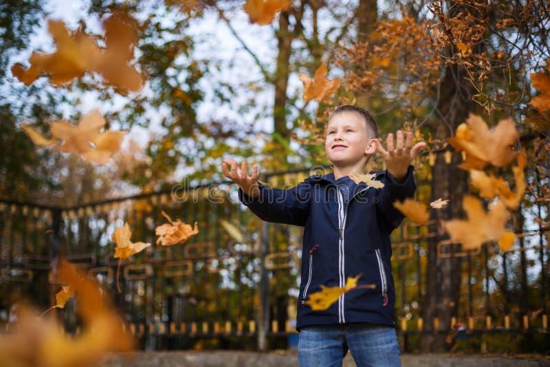 O menino joga as folhas de outono Crian?a alegre Parque, dia do outono fotografia de stock royalty free