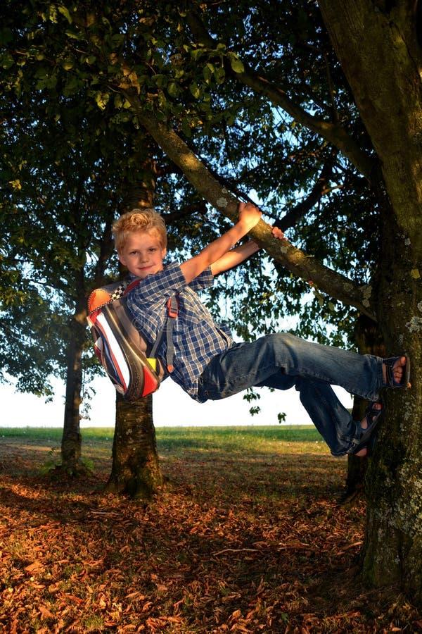 O menino louro pequeno está pendurando na árvore com schoolbag imagens de stock