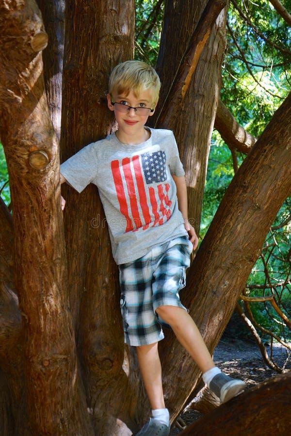 O menino novo escala a árvore foto de stock
