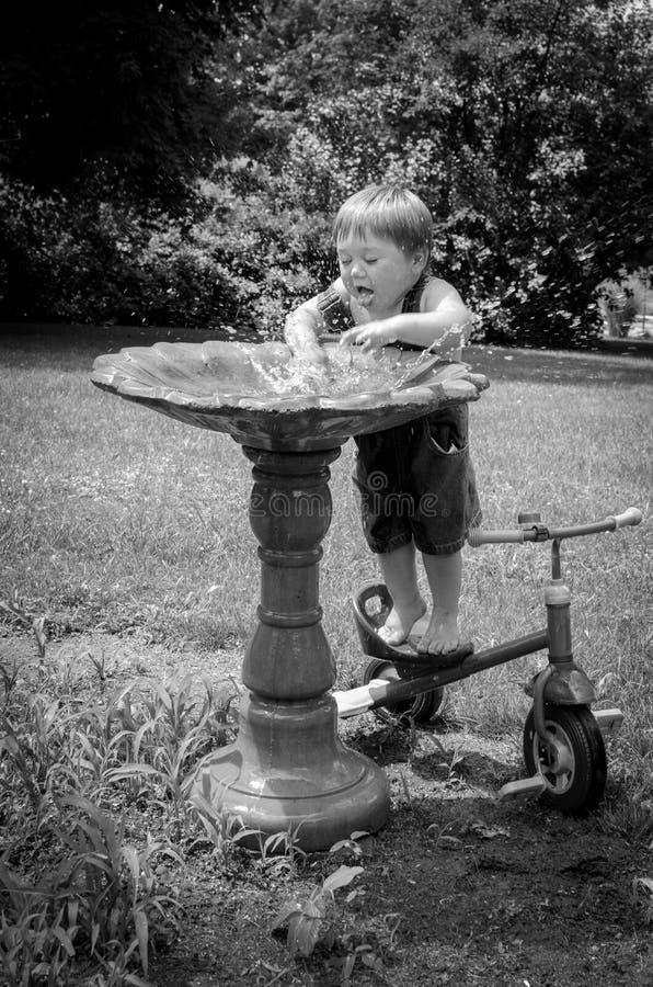 O menino novo espirra em um banho do pássaro fotografia de stock royalty free