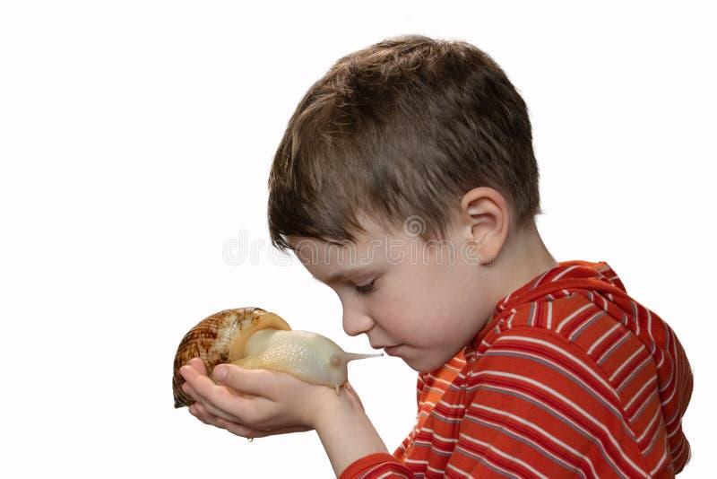 O menino olha delicadamente o caracol em sua mão, marisco da casa, amor para animais de estimação, isolado imagens de stock royalty free