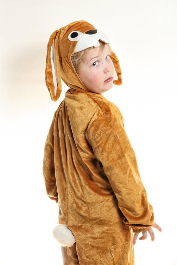O menino pequeno vestido como o coelho girou para a parte traseira fotografia de stock royalty free