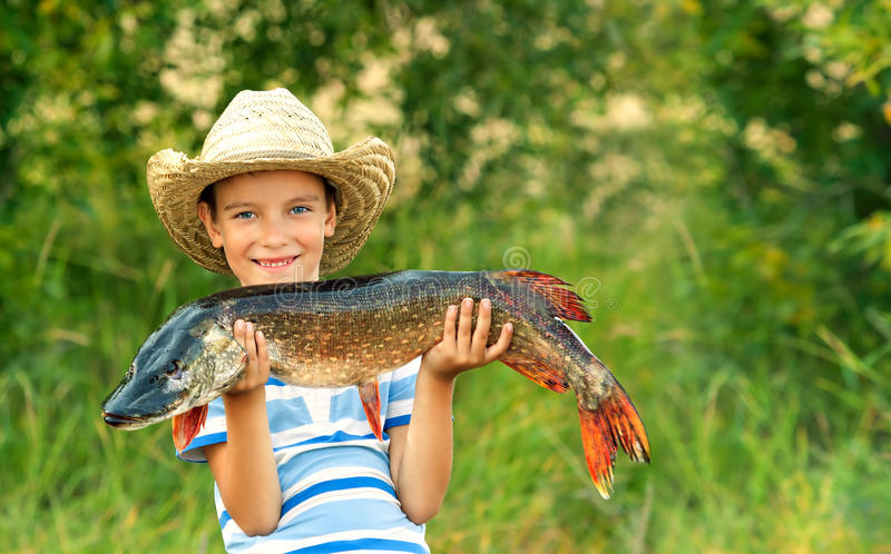 O menino prende peixes grandes imagem de stock royalty free