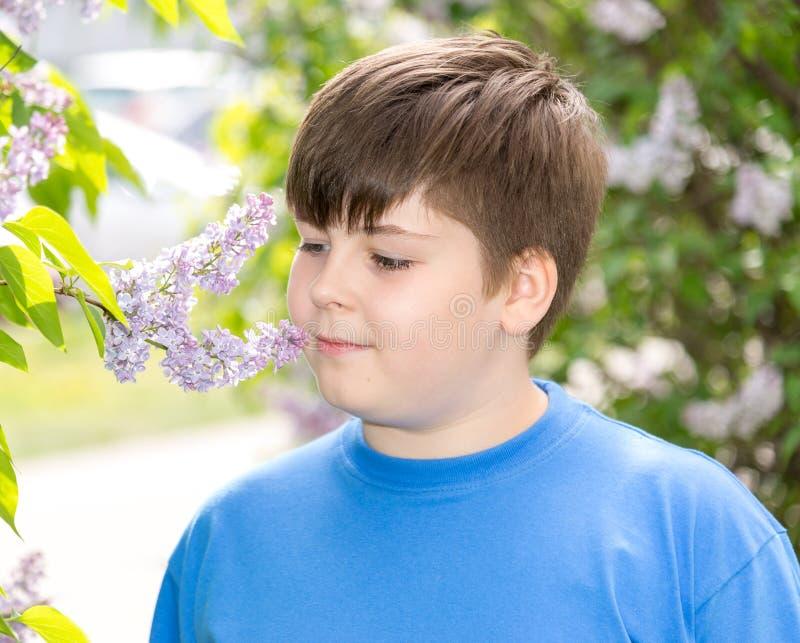 O menino que cheira um lilás floresce no parque imagens de stock royalty free