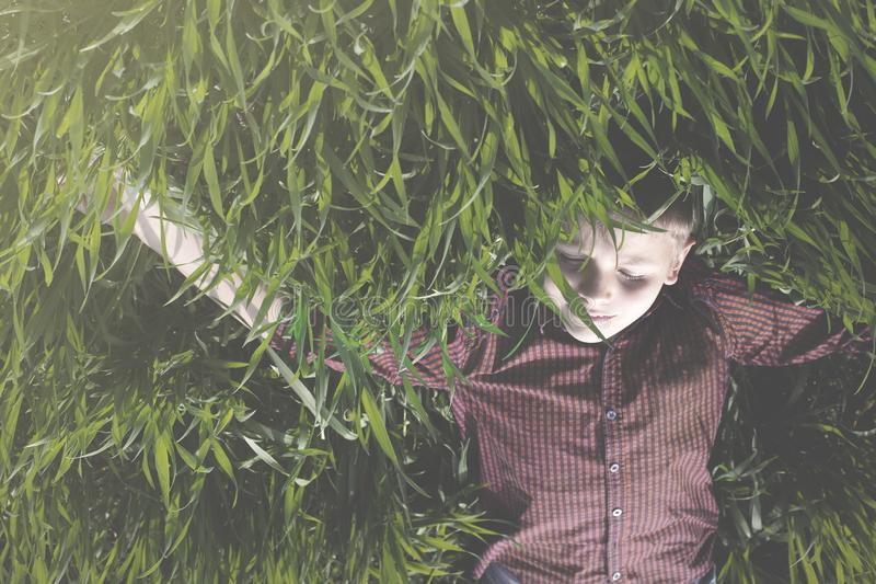 o menino tem o divertimento que rola ao redor no prado fotografia de stock royalty free