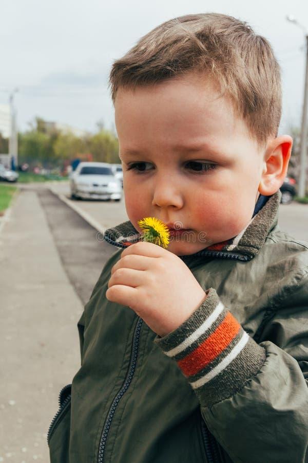 O menino triste aspira o dente-de-leão, mola o traumatismo psicológico das crianças Criança infeliz imagens de stock