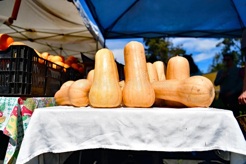 O mercado do fazendeiro em Cupertino imagens de stock royalty free