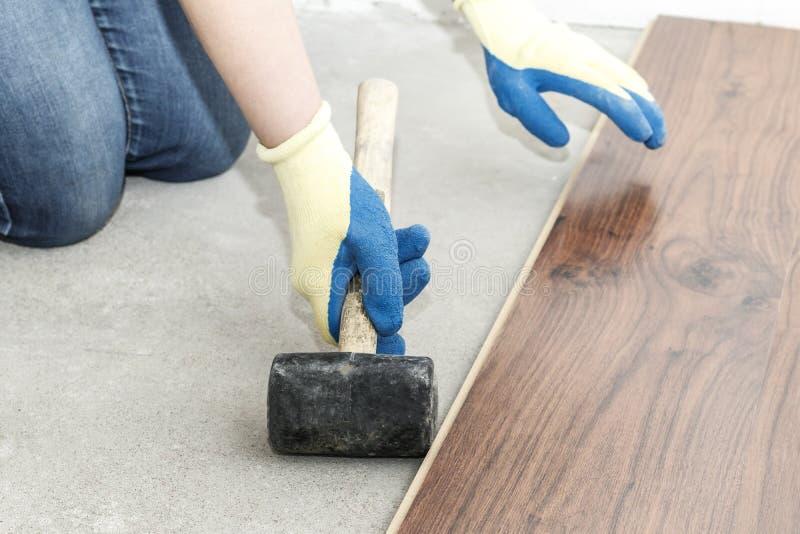 o mestre em luvas azuis faz a colocação floorboard há um nível e martelo de borracha fotos de stock royalty free