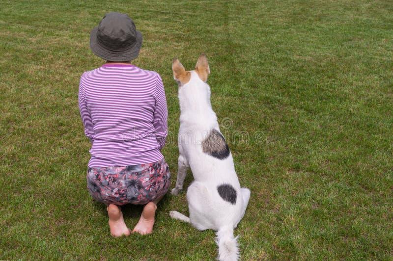 O mestre mostra ao cão novo como executar senta o comando foto de stock