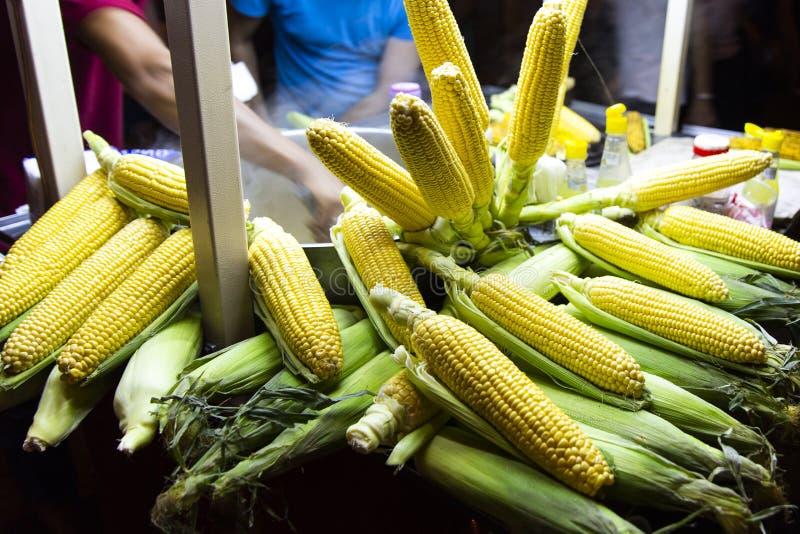 O milho é uma planta que possa geralmente ser crescida em climas muito úmidos fotos de stock