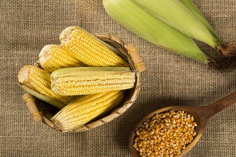 O milho e as pipocas do milho combinaram em uma tabela fotos de stock