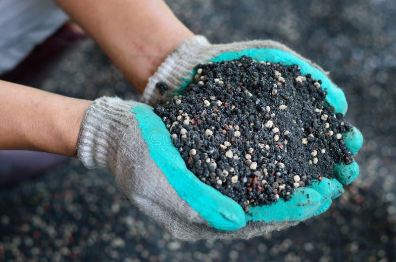 O misturado do adubo químico e do estrume da planta na mão do fazendeiro foto de stock royalty free