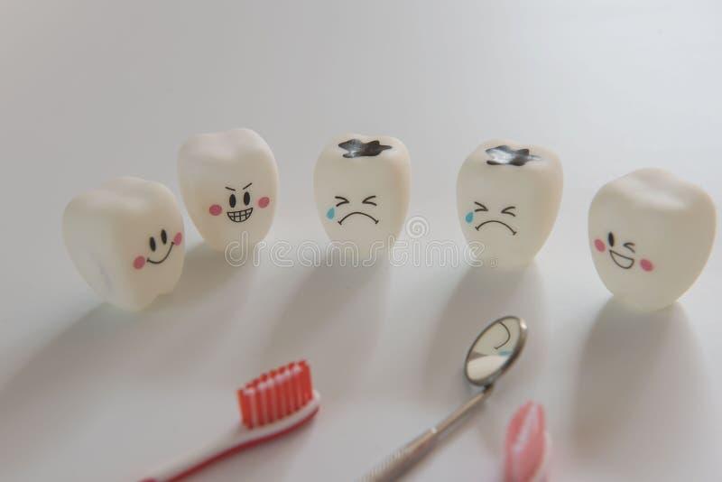 O modelo brinca os dentes na odontologia em um fundo branco foto de stock