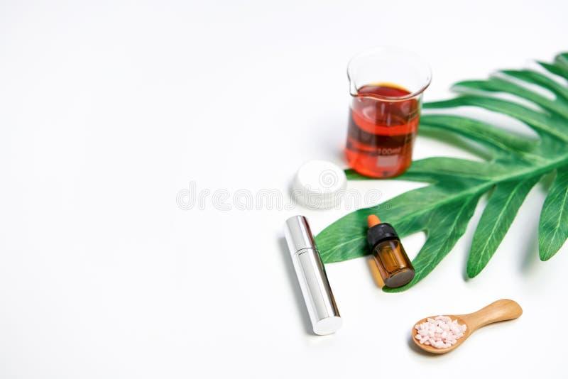 O modelo da garrafa de creme cosmética, do pacote vazio da etiqueta e dos ingredientes em um verde sae do fundo imagens de stock