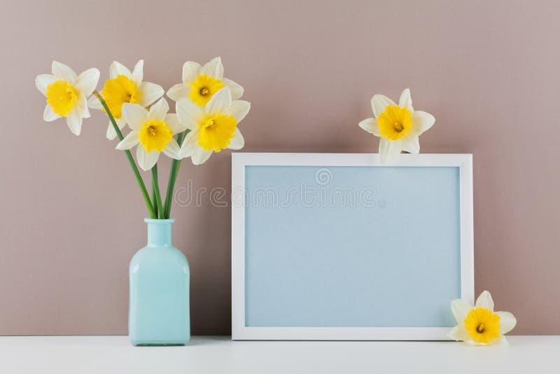 O modelo da moldura para retrato decorou flores do narciso no vaso com espaço vazio para o texto seu blogging e cumprimentar para fotografia de stock royalty free