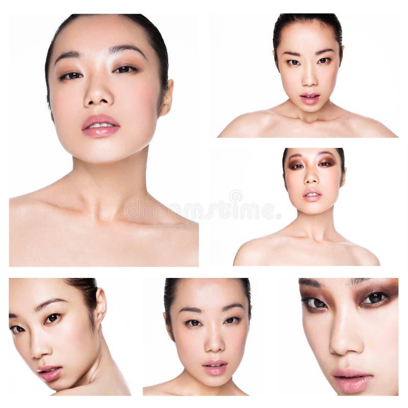 O modelo de forma asiático da beleza da colagem natural compõe imagem de stock
