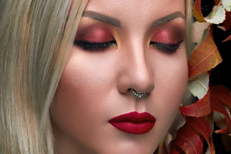 O modelo de forma bonito com composição vermelha dos bordos, seca as folhas foto de stock royalty free