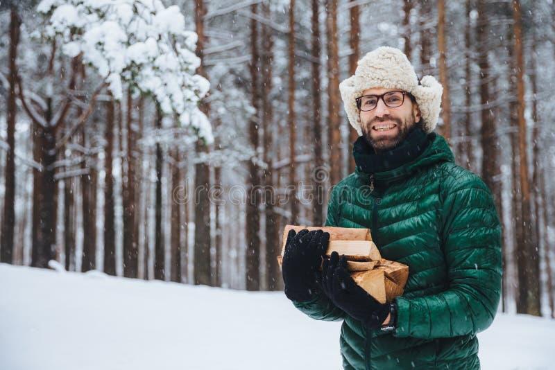 O modelo masculino de vista agradável da barba de Cheerfu guarda a lenha, passa o tempo livre na floresta, indo fritar o no espet imagem de stock royalty free