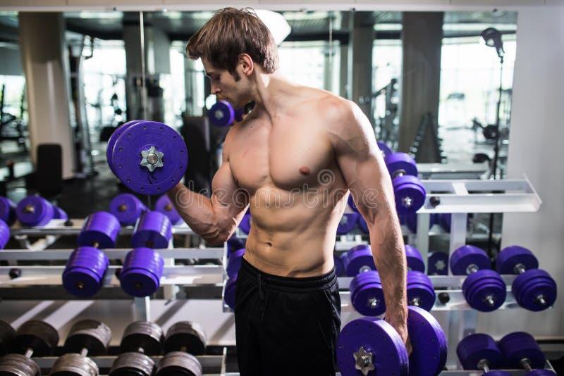 O modelo masculino novo descamisado atlético da aptidão guarda o peso com luz no gym fotografia de stock