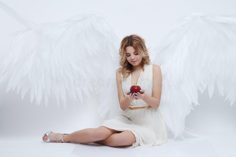 O modelo novo bonito com anjo grande voa o assento no estúdio fotografia de stock royalty free