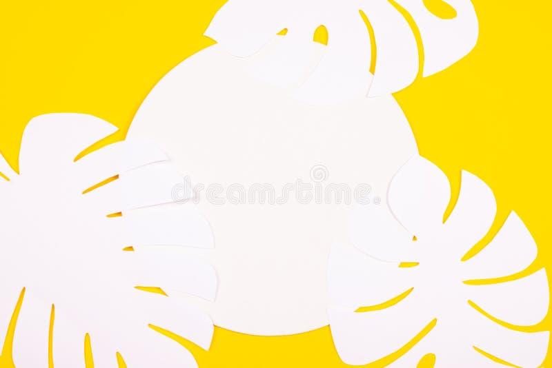 O monstera de papel sae no fundo amarelo fotografia de stock