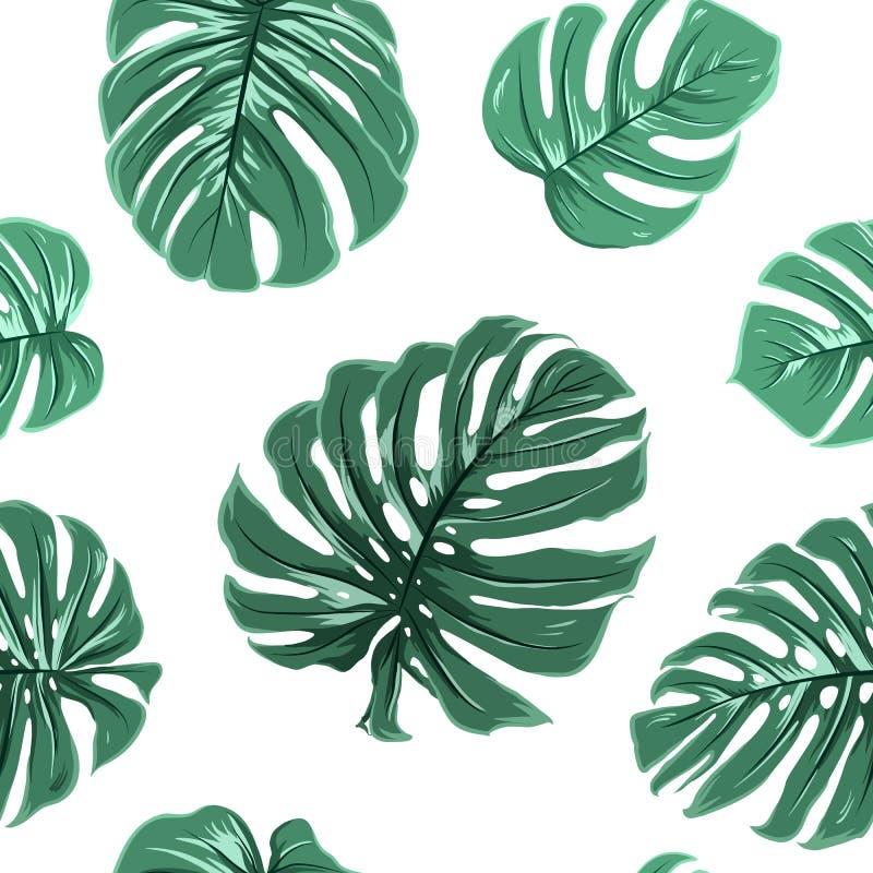 O monstera exótico tropical deixa o teste padrão sem emenda ilustração royalty free