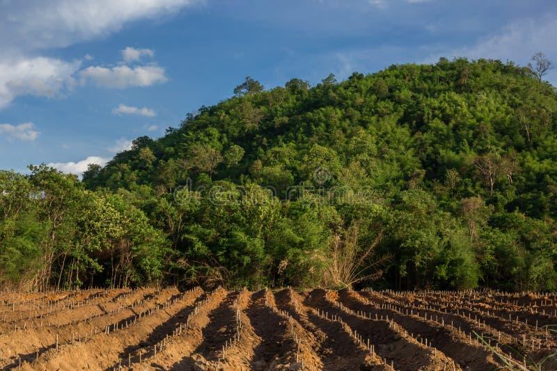 O montanhês cênico dirige em áreas rurais de Tailândia, fotos de stock