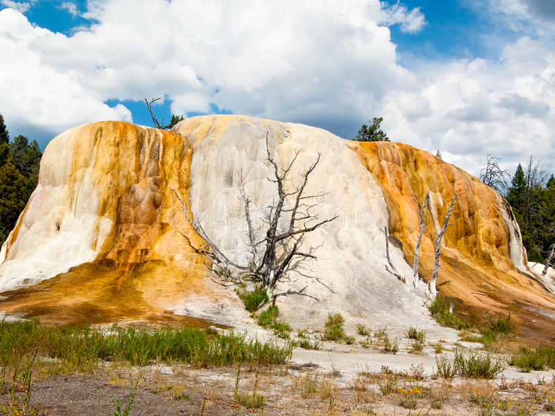 Monte alaranjado da mola em Yellowstone NP imagem de stock royalty free