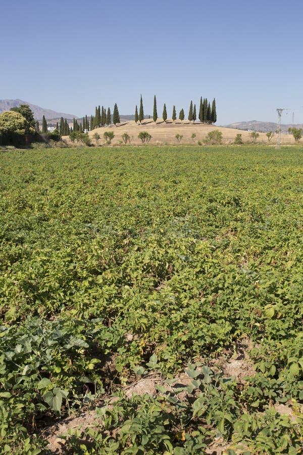 O monte de enterro do EL Romeral está acima das terras de Antequera, Espanha imagens de stock royalty free