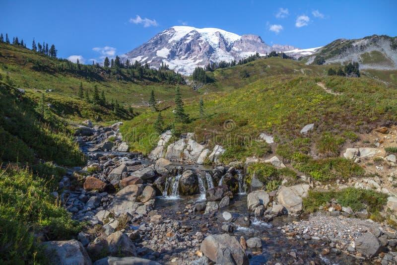 O Monte Rainier, o córrego e os prados alpinos da skyline arrastam imagens de stock royalty free