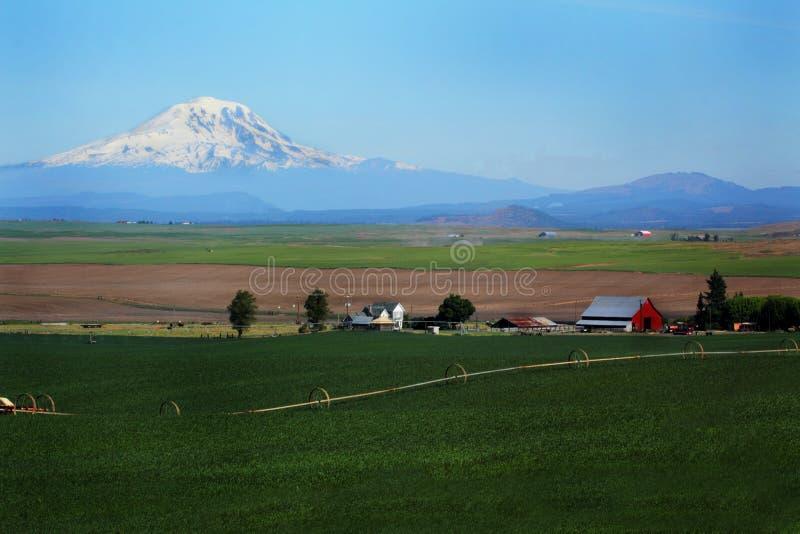 O Mt Adams negligencia a exploração agrícola imagem de stock