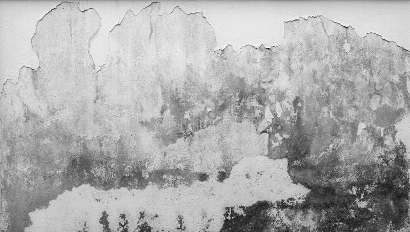 O muro de cimento branco velho está descascando Pinte o fundo da textura do sumário do muro de cimento Deteriorado ao longo do te fotografia de stock royalty free
