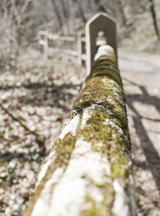 O musgo cobriu a cerca de madeira com o bokeh pesado fotografia de stock