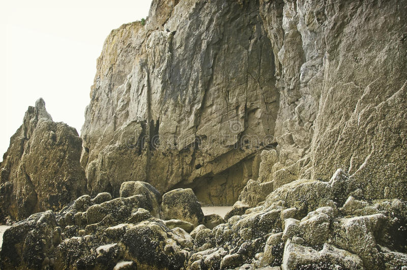 O musgo cobriu a rocha fotografia de stock