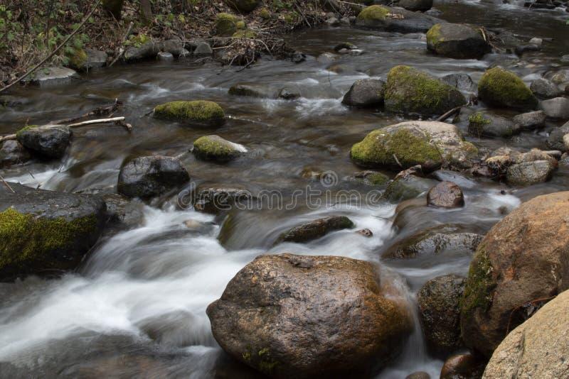 O musgo passado do fluxo longo da angra da exposição cobriu pedregulhos fotografia de stock royalty free