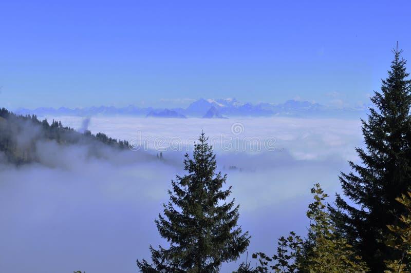 O névoa-oceano sobre os cumes suíços vistos de Rigi-Kulm perto de Kaltb fotografia de stock