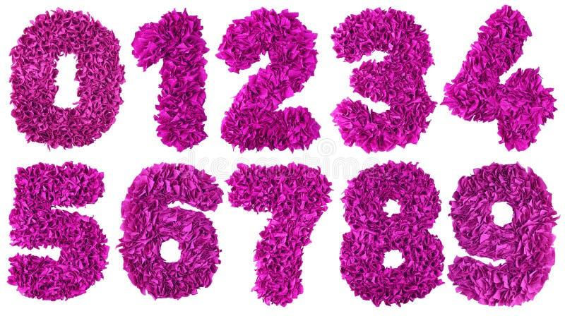 O número feito a mão ajustou-se das sucatas da cor de papel magentas ilustração royalty free